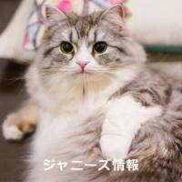 嵐・松本が離れられなかった艶系女優の新作タイトルはあのフレーズで決まり?