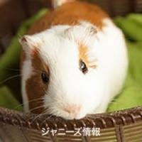 木村拓哉にインタビューした「報ステ」富川悠太アナになぜか猛省を促す声