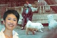 「蓮舫」家に犬の糞トラブル勃発 近所住民からの大ヒンシュク