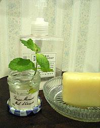 摘んでも切っても生い茂る、たくましいミントの活用法