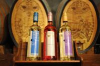 近年急上昇中! 次は英国ワインの時代が来る!?