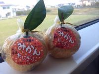 【みかん王国】愛媛に来たら「みかんおにぎり」を食べるべし!