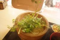 ベトナムの丸亀製麺はパクチーを盛れる!日本食チェーンの海外向けローカライズ