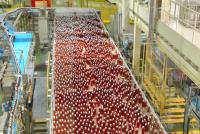 一生分の「午後の紅茶」を見た キリンビバレッジ湘南工場に潜入
