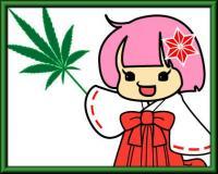 大麻草をアピールする「ゆるキャラ」が生まれた経緯を聞いてみた