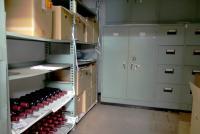 商店街でワインを作る異色ワイナリー 銀行の金庫室を倉庫、パチンコ店を工場に