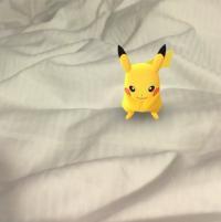 「ポケモンGO」ドイツでやってみた。あの黄色いポケモンが悪夢と化す