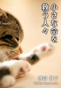 震える指でボタンを押す。犬猫殺処分の現実『小さな命を救う人々』
