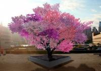 まるで植物界のキメラ。40種以上の実がなる木プロジェクトが進行中
