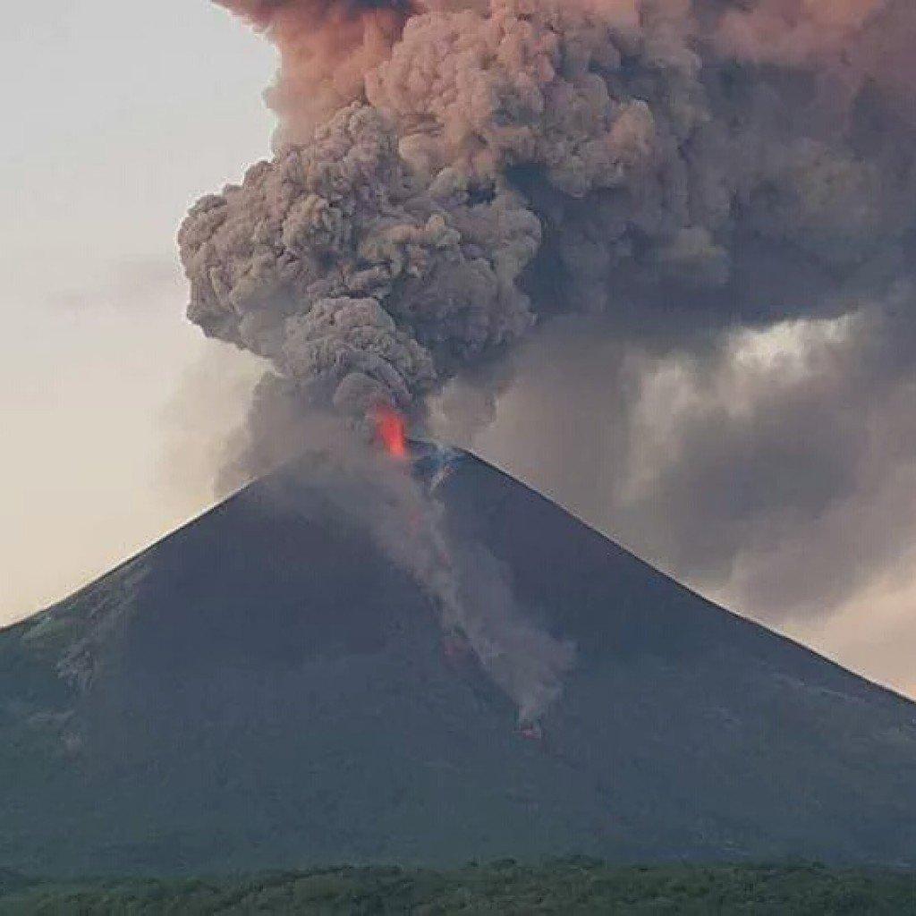 中米ニカラグア モモトンボ火山...