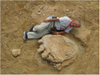 大きさ106cm 世界最大級の草食恐竜の足跡 モンゴルで発見 岡山理大