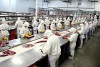 輸出大国ブラジルで鶏肉汚染スキャンダル 日本への影響は?