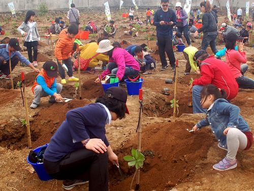国際森林デー 台湾・澎湖で植樹イベント 島で森を育む計画進む