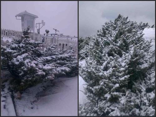 台湾最高峰・玉山で春の雪 積雪3センチ