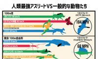 人類最強レベルのトップアスリートたちは動物界でいうとどれくらい?5つの競技種目で比較してみたインフォグラフィック
