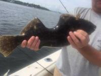 体をかじられながらも生き延びていた魚、漁師が釣り上げびっくり仰天、こんなにもえぐれていたわけだし(アメリカ)