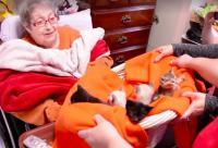 ホスピスで最後の医療を受けているおばあさんの唯一の願いは「死ぬまでに子猫をぎゅっと抱きしめたい」だった。その夢が叶う瞬間。