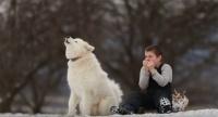 心と体がまるごと浄化されていく・・・少年と少年のふくハーモニカの音色に合わせて歌う犬のいる風景