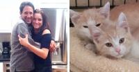 これがネコパシー?恋に落ちた男女、お互いに飼っていた猫がきょうだいだったというミラクルが勃発(アメリカ)