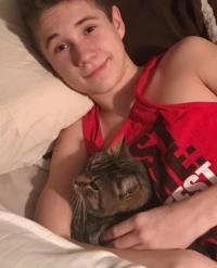 高速道路で走行中の車から放り出された猫。だが猫は強運の持ち主だった。すぐ後ろの車にいた動物好きな少年に救われる(アメリカ)