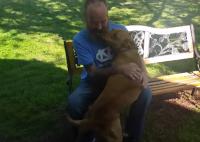 病気で激やせしてしまった男性が退院。愛犬は自分のことを認識してくれるのだろうか?その反応は・・・