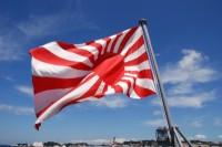 AFCが日本の旭日旗問題を調査へ、韓国教授の抗議受け=韓国ネット「こんな当たり前のこと指摘される前に調査して」「海外では問題視されていない」