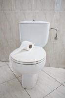 日中最大の違いはトイレにあった!美しすぎる日本人留学生の発言に、「最大の違いは汚さ」「日本で便器を丸ごと買わないと」―中国ネット