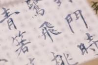 京都にオープン予定の「漢字博物館」に、漢字の祖国・中国のネットユーザーの反応は?