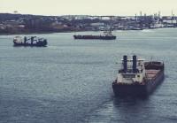 中国が驚異的な低価格で石油備蓄、スーパータンカー83隻が中国に向かう―中国メディア