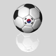 韓国のサッカーチームがピッチにごみ捨て、浦和の選手とあわや乱闘か=韓国ネット「これは韓国が悪い」「浦和の選手は命拾いしたな」