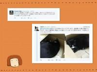 日本でアマゾンが神対応、ユーモアたっぷりのやり取りが中国でも話題に=「かわいいな」「たたえるべき対応」―中国ネット