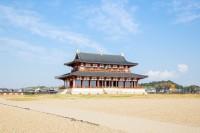 韓国伝統のすごろくの道具か?奈良・平城宮跡で出土=韓国ネットは懸念「まさかこれも日本が元祖だと言い出す?」「今後のシナリオはもう見えてる」