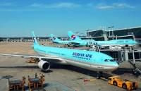 成田発の大韓航空機、韓国着陸直後にタイヤがパンク=韓国ネット「ナッツでも踏んだんだろう」「日本に対して恥ずかしい」