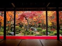 京都に残る唐代の面影を見て最初は誇らしかったが、もはやそんな気持ちにはなれなくなった―中国コラム