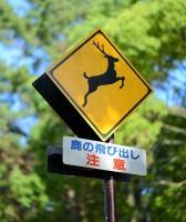 日本旅行の一番の思い出=「どこから来たの?」と聞かれて「China」と答えると…―訪日中国人