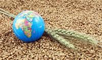 なぜ穀物小国の日本には穀物メジャーに匹敵する商社があるのか?「日本を見てから中国を見ると、中国人であることは悲哀でしかない」―中国ネット