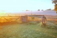 豪農業4家族シンジケートが入札に名乗り、中国企業の巨大牧場買収阻止へ―米紙