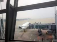 韓国の旅客機3機で機体トラブル、半日の間に世界各地で相次ぐ=韓国ネット「国の恥だ」「第2のセウォル号事故が起こるかも」
