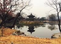 「元慰安婦の証言は個人の経験、客観的でない」前駐韓日本大使の発言に韓国ネットが注目=「正しい意見だ」「必ず慰安婦合意を破棄する!」