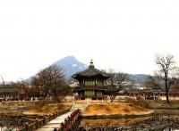 韓国観光業界が悲鳴!日韓GSOMIA締結でうそのように消えた中国人観光客=韓国ネット「自業自得」「指導者を選び間違ったせいで…」