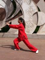 韓国による太極拳の文化遺産登録を阻止せよ!=「はいはい。みんな韓国のものでいいですよ」「中国政府はいったい何をしているのだ?」―中国ネット