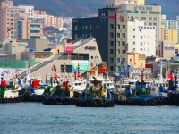 """韓国の女性が男性のパスポートで出国審査を""""無事""""通過、日本で捕まる=「ほぼフリーパス…」「韓国の公務員は何でもいいかげん」―韓国ネット"""