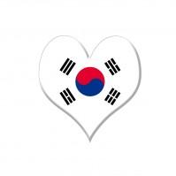 韓国の俳優「愛国心が揺らいだ」、中国と韓国の地震対応の違いに言及―中国メディア