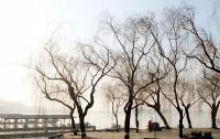 韓国が「大気汚染は中国のせい」と主張、韓国の学者らは「世界の恥さらし」とため息―韓国メディア