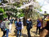 「もう素直に日本が好きだと言おうよ」=訪日旅行の韓国人がまた大幅増で、韓国ネットが本音を吐露