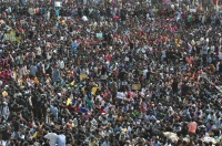 最高裁が禁止の「牛追い祭り」、復活求めインド南部で大規模デモ