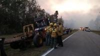 自宅で書籍燃やし森林火災に発展、米フロリダ州