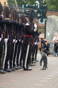 英動物園のペンギン、ノルウェー近衛部隊の准将に昇進