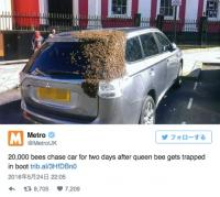 【恐怖!】48時間以上、2万匹のハチに追い回された車