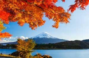 外国人から見た日本「不思議な事象が数多く存在する孤独な島国」